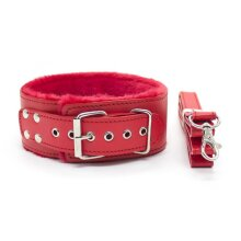 Collar and Lead - Red