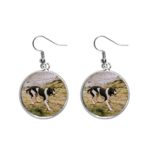 Dog Black White Animal Picture Ear Dangle Silver Drop Earring Jewelry Woman
