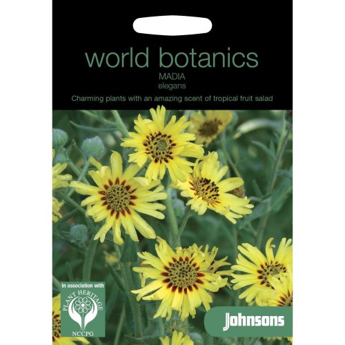 Johnsons World Botanics Flower - Pictorial Pack - Madia elegans - 50 Seeds