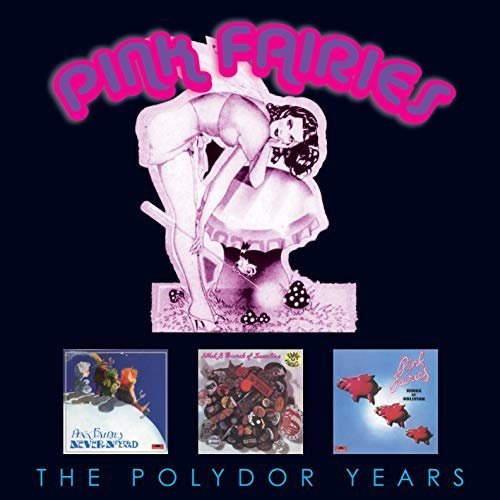 PINK FAIRIES - THE POLYDOR COLLECTION (3CD) [CD]