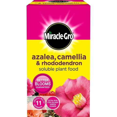 Miracle-Gro Azalea, Camellia & Rhododendron Soluble Plant Food 1kg [016803]