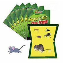 Expert Catch Household Mouse & Rat Sticky Glue Trap Board