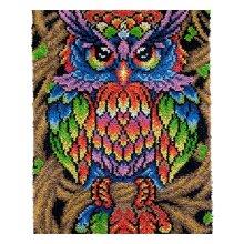Rainbow Owl Rug Latch Hooking Kit (85x58cm)