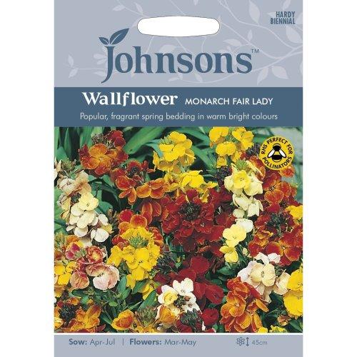 Johnsons Seeds - Pictorial Pack - Flower - Wallflower Monarch Fair Lady - 500 Seeds