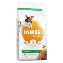 Iams Vitality Adult Small & Medium Dog Food With Fresh Chicken 2kg