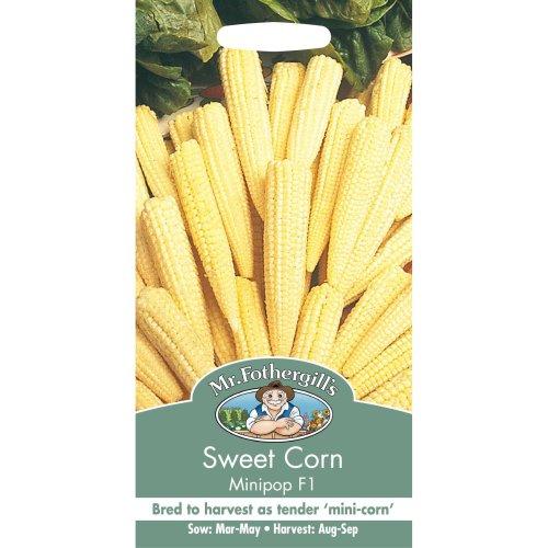 Mr Fothergills - Pictorial Packet - Vegetable - Sweet Corn Minipop F1 - 50 Seeds