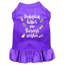 Pumpkin Kisses Screen Print Dog Dress, Purple - Small