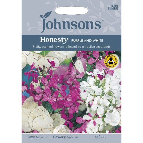 Johnsons Seeds - Pictorial Pack - Flower - Honesty Purple and White - 50 Seeds