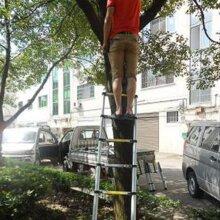 Portable 2.9M Aluminum Extension Ladder Multi-Purpose Telescopic UK