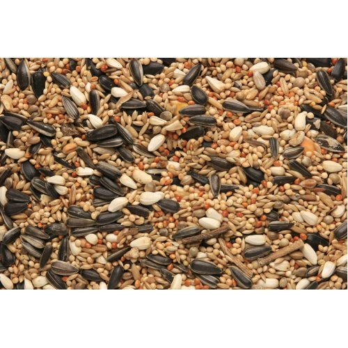 SkyGold Cockatiel & Parakeet Cage & Aviary Seed Mix 4x3Kg