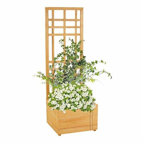 Garden Wooden Plant Box With Trellis Support Patio Lattice Planter Flowerpot