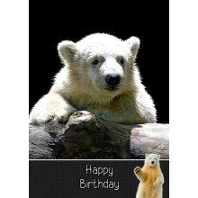 """Polar Bear Birthday Greeting Card 8""""x5.5"""""""