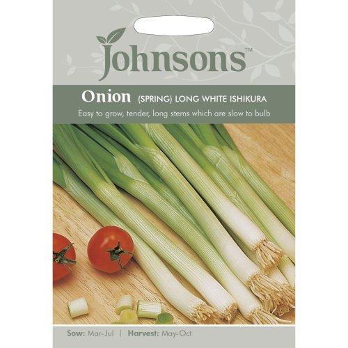 Johnsons Seeds - Pictorial Pack - Vegetable - Onion (Spring) Long White Ishikura - 375 Seeds