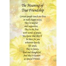 "True Friendship Poem Verse Greeting Card 8""x5.5"""