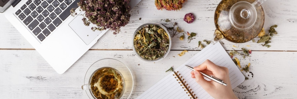 dried flower matter with person taking notes