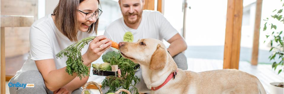 Delicious Homemade Pet Food Recipes