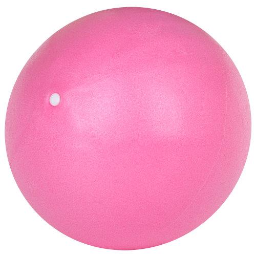 Trixies Pink Pilates Workout Exercise Ball