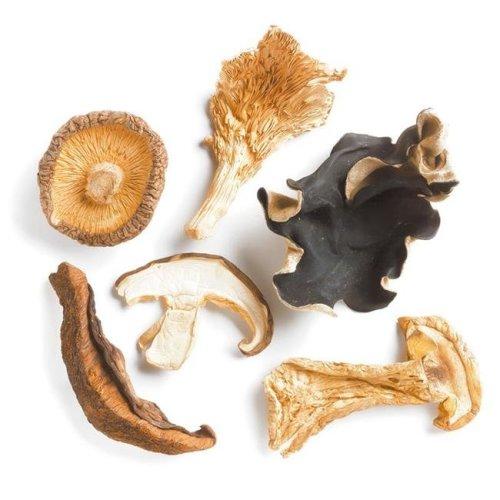 Woodland Foods 230482 1 lbs Forest Blend Mushrooms