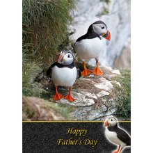 """Puffin Father's Day Greeting Card 8""""x5.5"""""""