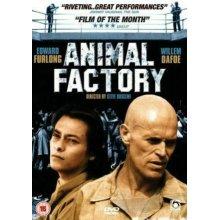 Animal Factory (DVD, 2004) - Used