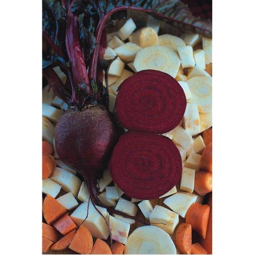 Vegetable - Beetroot - Detroit Globe - 1000 Seeds