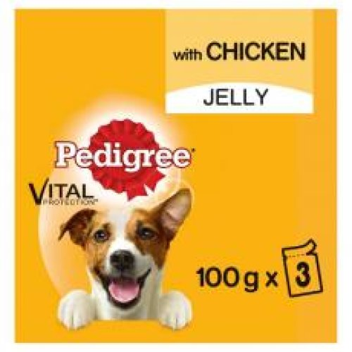 Pedigree Dog Pouches With Chicken In Jelly 3x100g (Pack of 14)