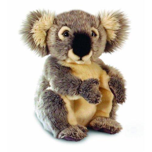 Keel Koala Bear Soft Toy 28cm