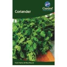 Coriander Seeds Herbs Garden Treasure