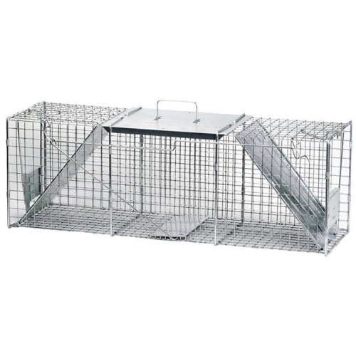 /victor  Two Door Raccoon Trap Cage