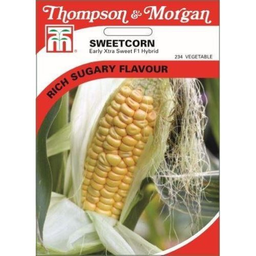 Thompson & Morgan - Vegetables - Sweetcorn Early Xtra Sweet F1 Hybrid - 30 Seed