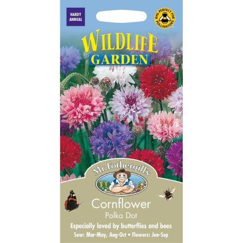 Mr Fothergills - Pictorial Packet - Flower - Cornflower Polka Dot - 500 Seeds