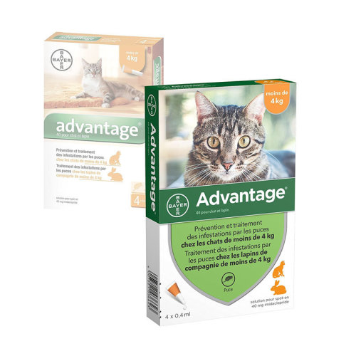 Advantage Bayer 40 for Small Cats < 4kg