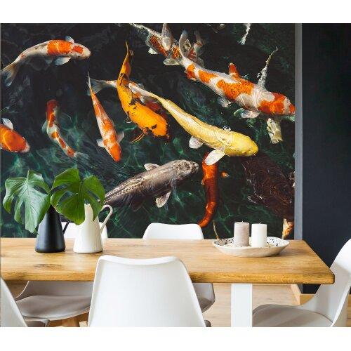 3D Koi Fish 162 Wall Murals Wallpaper Murals