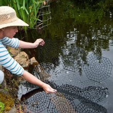 20 Piece Pond & Fish Guard Protector