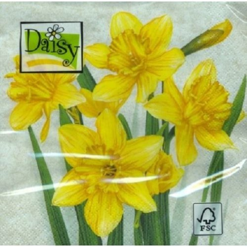 Daisy Pack of 20 Napkins / Serviettes - Daffodils - 33cm x 33cm - 3ply