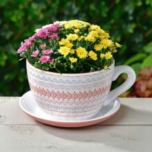Desert Palms Design Teacup Planter With Saucer Garden Patio Outdoor Planting Decor Garden Decor