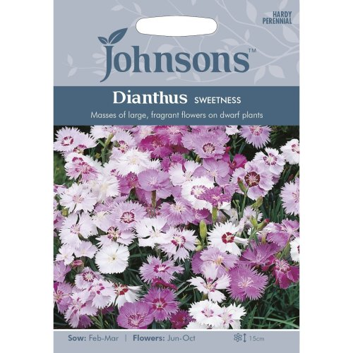 Johnsons Seeds - Pictorial Pack - Flower - Dianthus Sweetness - 75 Seeds