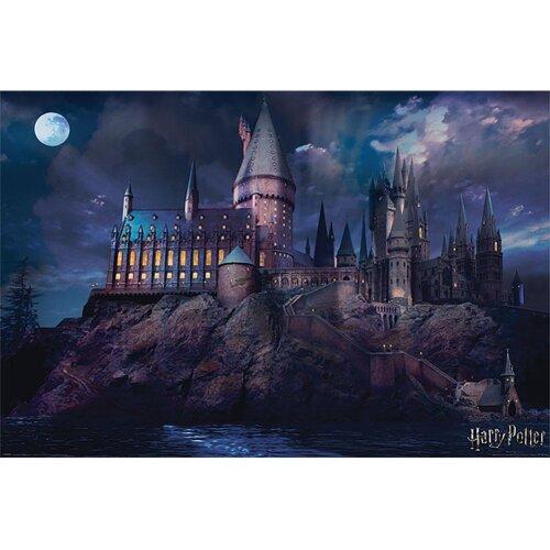 Harry Potter Poster Hogwarts Night 299