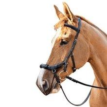 Equilibrium Horse Relief Muzzle Net Compatible With Micklem Bridle