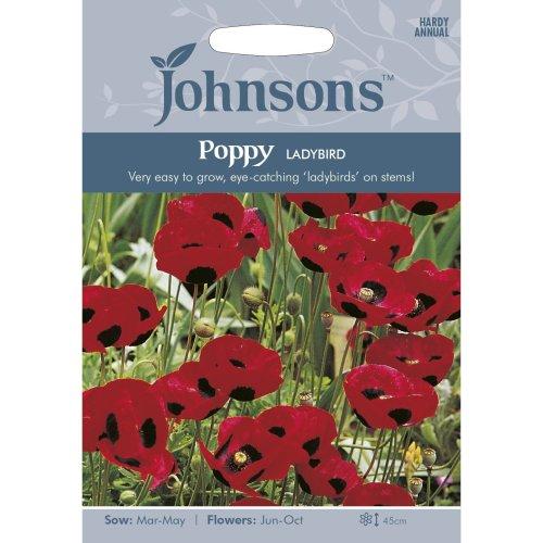 Johnsons Seeds - Pictorial Pack - Flower - Poppy Ladybird - 1000 Seeds